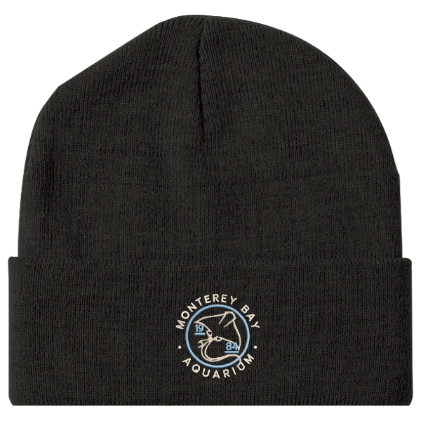 ADULT BEANIE RAY 1984 BLACK