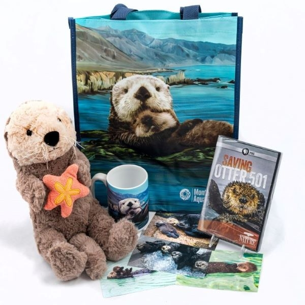 SEA OTTER PACKAGE