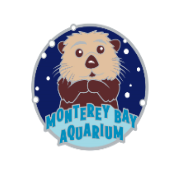 COLLECTIBLE SEA OTTER PIN